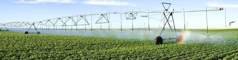 efficient_irrigation