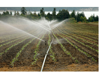 irrigation_photo1