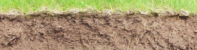 soil_compaction